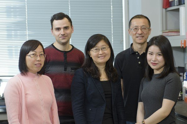 The Liang Deng Lab