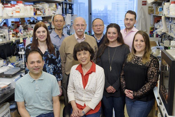 Gavril Pasternak Lab Group