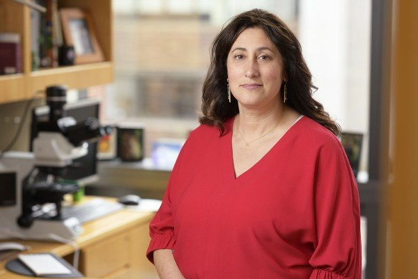 Memorial Sloan Kettering Pathologist Christine Iacobuzio-Donahue