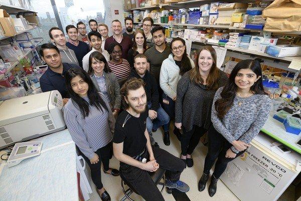 The Jason Lewis Lab Group