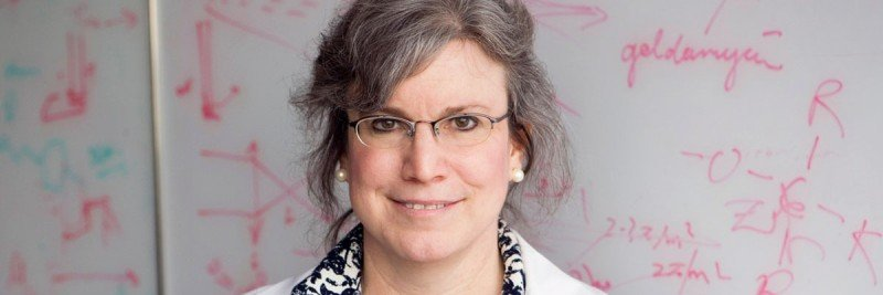 MSK clinician-scientist Michelle Bradbury co-directs the MSK-Cornell Center for Translation of Cancer Nanomedicine