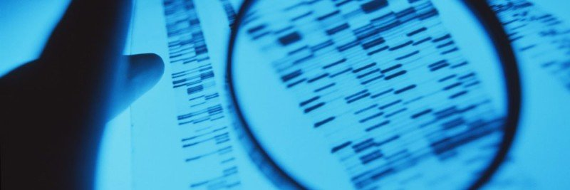 Gloved hand and magnifying glass on banded DNA sequences