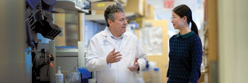 A postdoc in the lab of Sloan Kettering Institute scientist Scott Lowe
