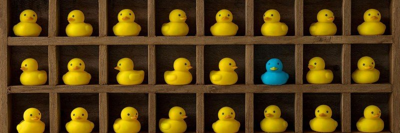 a cabinet full of yellow rubber duckies and one blue one