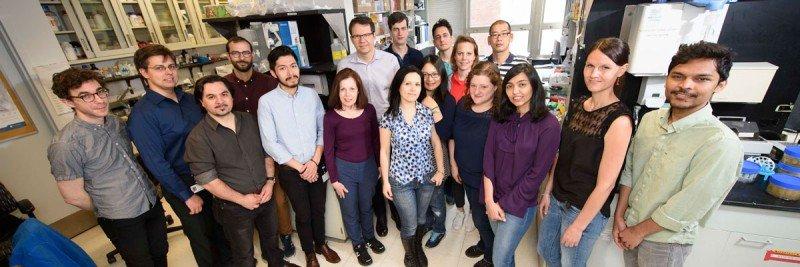 Group shot of Michel Sadelain lab