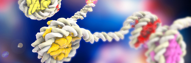 DNA winding around histones