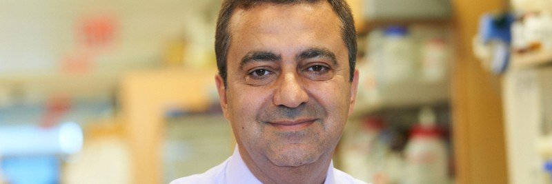 Video: Meet Medical Oncologist Anas Younes