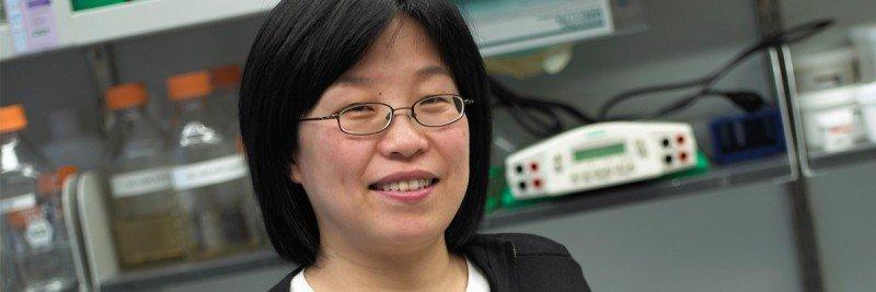 Xiaolan Zhao